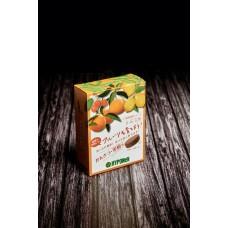 Таблетированное удобрение для цитрусовых и плодовых деревьев и кустарников N-P-K 8-10-9, 30 табл.